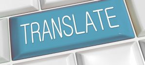 translation services, professional translation services, translation, translator